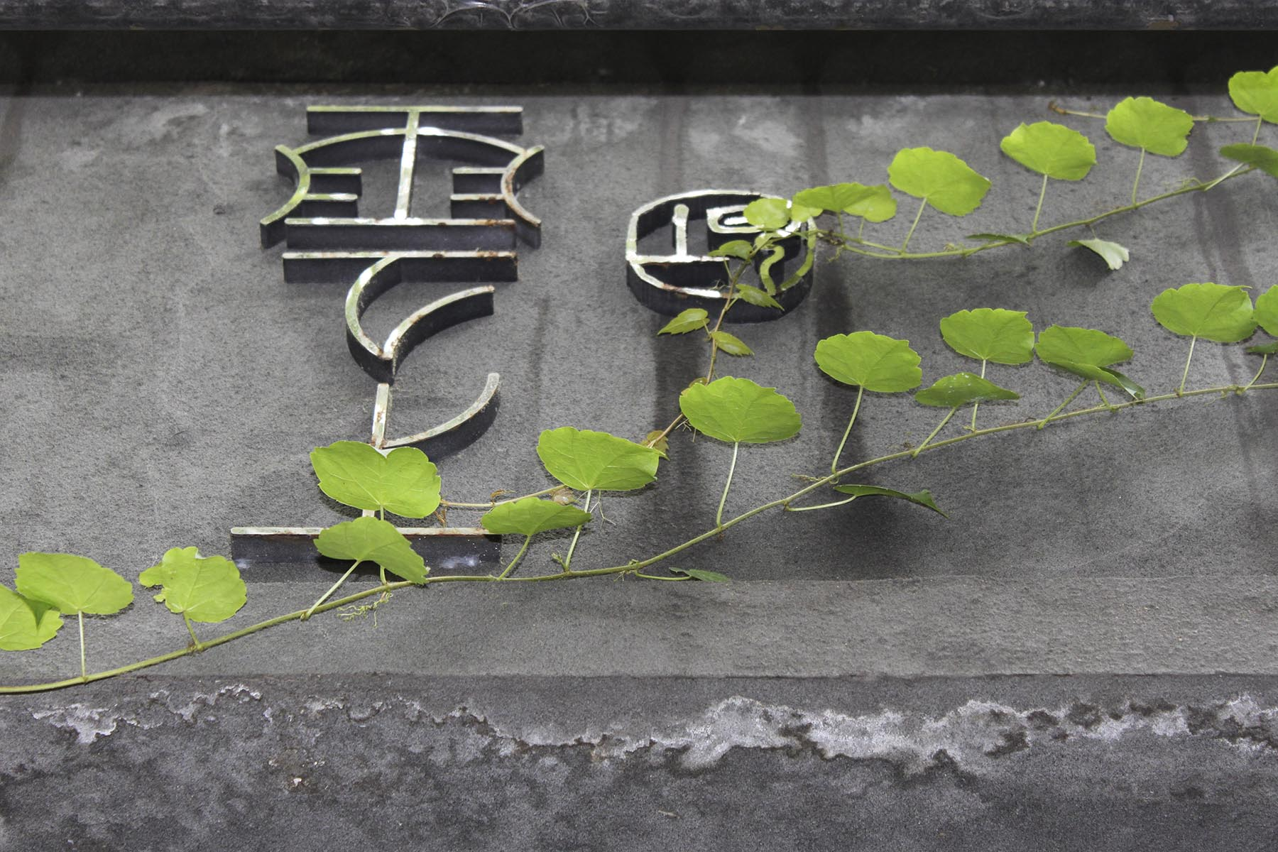 China 11 BANKTM @bank_graphic_design_today lo